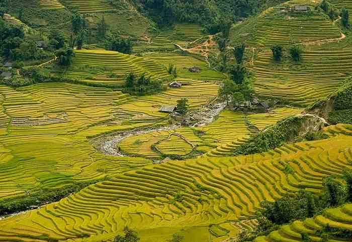 Discover Muong Hoa Valley with 2 nights Homstay